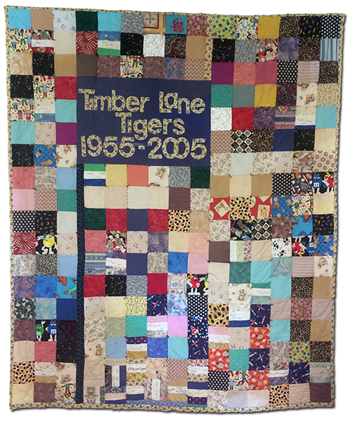 Photograph of the 50th anniversary quilt that hangs in the main office at Timber Lane Elementary School. The patchwork quilt is approximately six feet tall by five feet wide. The quilt is made up of some 246 small fabric squares. Near the top left corner is a blue flag with the words Timber Lane Tigers, 1955-2005 sewn onto it.